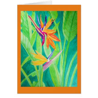 花水彩画の極楽鳥 カード