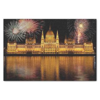 花火を持つブダペストの議会ハンガリー 薄葉紙