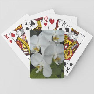 花白いコチョウランの蘭 トランプ