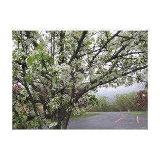 花盛りのナシ木 キャンバスプリント