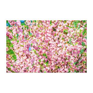 花盛りのプラム キャンバスプリント