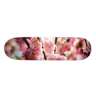 花盛りのプラム-ピンクのParadize スケートボード