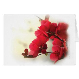 花盛りのマルメロ カード