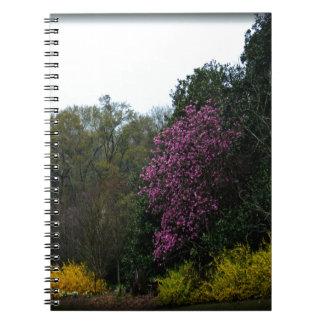 花盛りの木 ノートブック