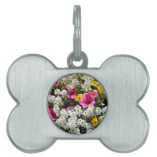 花盛りのachilleaおよびペチュニア ペットネームタグ