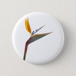 花(ゴクラクチョウカ属のreginae)極楽鳥 5.7cm 丸型バッジ