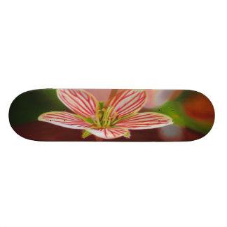 花 スケートボードデッキ