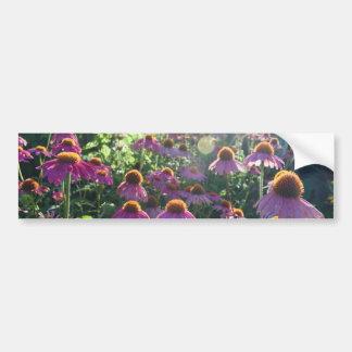 花(バンパーステッカー)の分野 バンパーステッカー