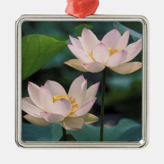 花、中国のはすの花 メタルオーナメント