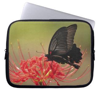 花、千葉のすばらしいモルモン教徒(Papilioのmemnon) ラップトップスリーブ