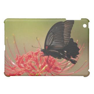 花、千葉のすばらしいモルモン教徒(Papilioのmemnon) iPad Miniケース