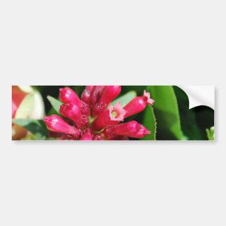花-花束-ピンク バンパーステッカー
