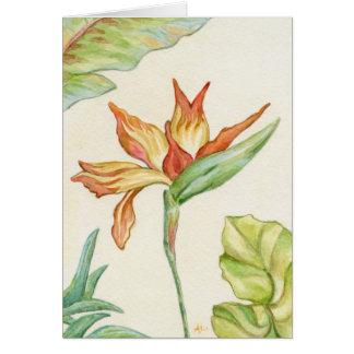 花Notecard極楽鳥 カード