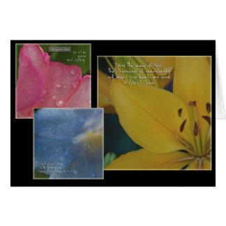 花Philippians カード