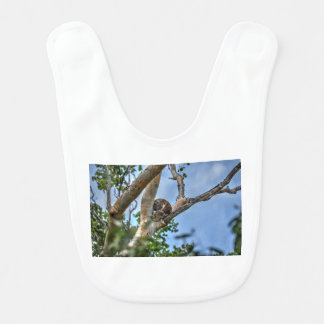 芸術の効果の木オーストラリアのコアラ ベビービブ