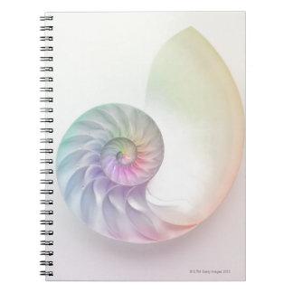 芸術的な着色されたオウムガイのイメージ ノートブック