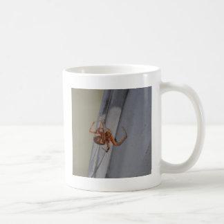 若いくもはくもの巣を回します コーヒーマグカップ