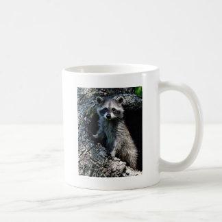 若いアライグマ コーヒーマグカップ