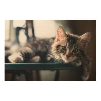 若いオスの虎猫猫2 ウッドウォールアート