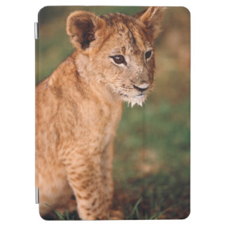 若いライオンのモデル iPad AIR カバー