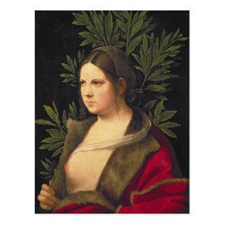 若い女性のポートレート、1506年 ポストカード