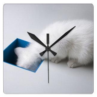 若い子ネコは正方形の下の彼の頭部を伸ばします スクエア壁時計