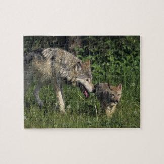 若い子犬を持つオオカミの母 ジグソーパズル
