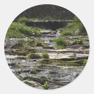 若い川 ラウンドシール