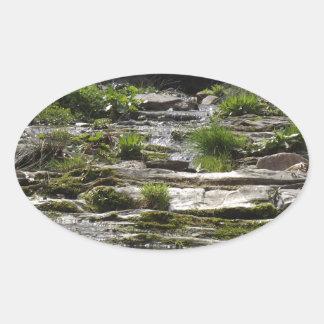 若い川 楕円形シール