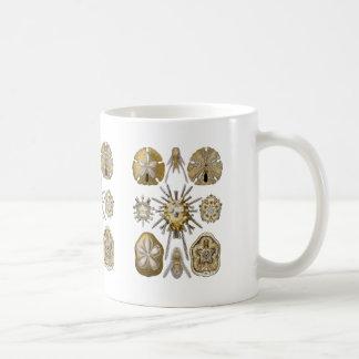 若い雲丹 コーヒーマグカップ