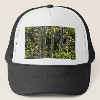 若い《植物》アスペンの木 キャップ