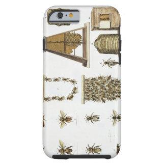 「若いLandsman」からの蜂そして養蜂、p iPhone 6 タフケース