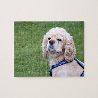 若くかわいい犬の提起 ジグソーパズル