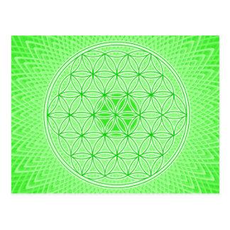 若草色のサイケデリックで神聖な幾何学の曼荼羅 ポストカード