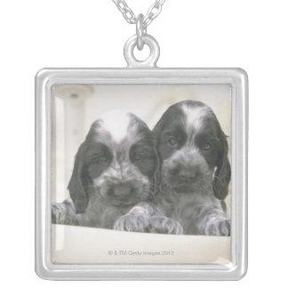 英国のコッカースパニエルは犬の品種です。 それ シルバープレートネックレス