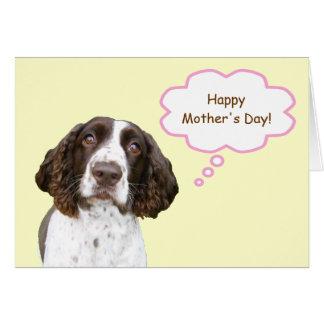 英国のスプリンガースパニエルの母の日カード カード
