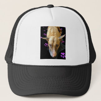 英国のブルテリアの帽子の野球帽 キャップ