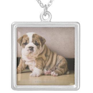 英国のブルドッグの子犬 シルバープレートネックレス
