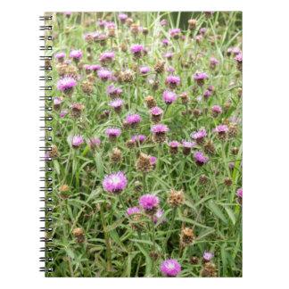 英国の田舎の紫色のアザミ ノートブック