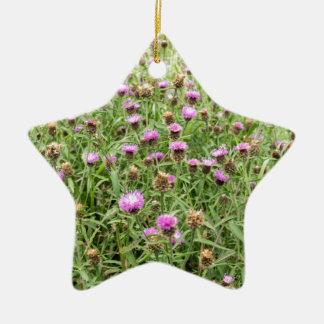 英国の田舎の紫色のアザミ 陶器製星型オーナメント