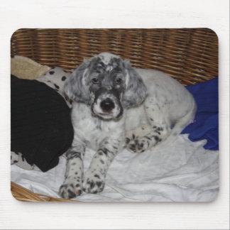 英国セッターの子犬 マウスパッド