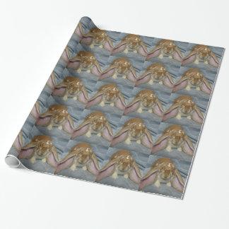 英国LOPのバニーウサギの包装紙 ラッピングペーパー