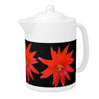 茶ポット-イースターサボテン