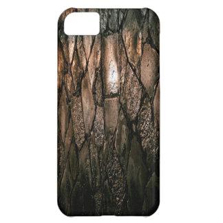 茶色のぬれた舗装の質 iPhone5Cケース