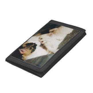 茶色のぶち猫および白い子猫 ナイロン三つ折りウォレット
