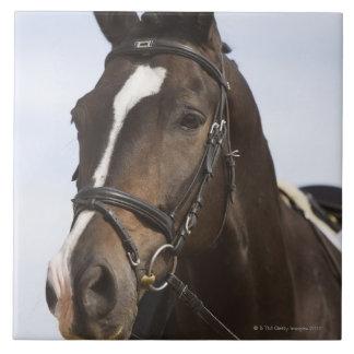 茶色の馬のポートレート タイル