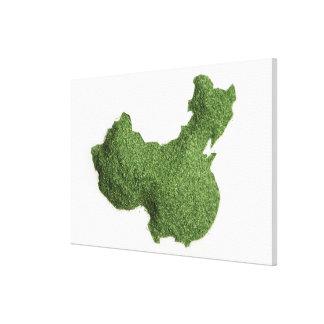 草から成っている中国大陸の地図 キャンバスプリント