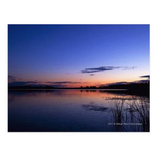 草が付いている湖Wabamun上の日没 ポストカード