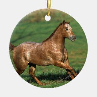 草が茂った分野のAppaloosaの馬のランニング セラミックオーナメント