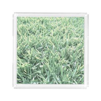草が茂った、自然 アクリルトレー